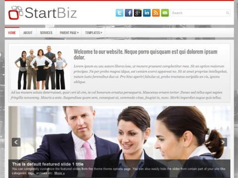 05-StartBiz-WordPress-Theme